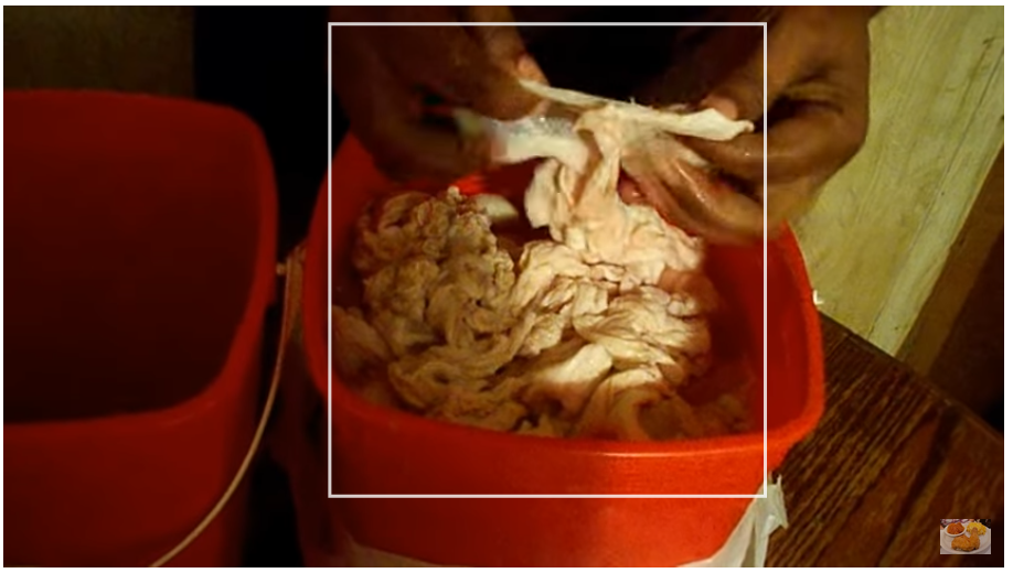 Cleaning Chitterlings